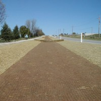 Erosion-Control-Miller-Seed-unspecified-17