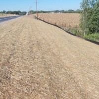 Erosion-Control-Miller-Seed-unspecified-2